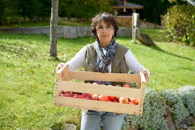 Mulher sorridente segurando uma caixa de maçãs vermelhas no jardim