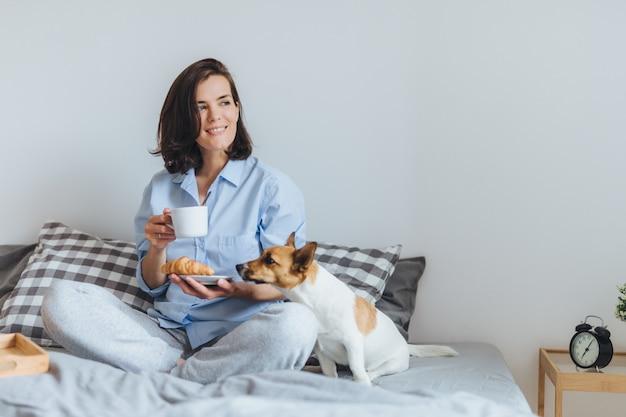 Mulher sorridente sonhadora, com cabelos escuros, veste roupas domésticas, toma café da manhã na cama, senta-se perto de seu animal de estimação favorito