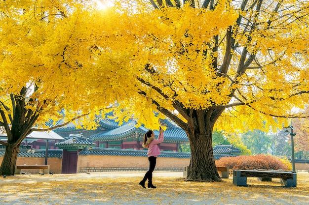 Mulher tira uma foto no outono em gyeongbokgung