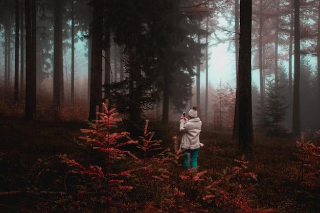 Mulher tirando foto de árvore na floresta