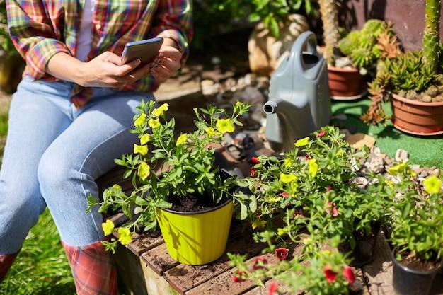 Mulher tirando fotos com celular da petúnia de flores que ela plantou no jardim de verão em casa, ao ar livre, o conceito de jardinagem e flores.