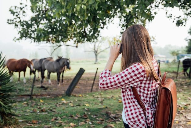 Mulher tirando uma foto de cavalos