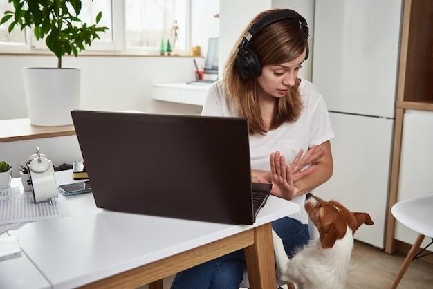 Mulher trabalha no laptop com o cachorro, o cachorro atrapalha o trabalho