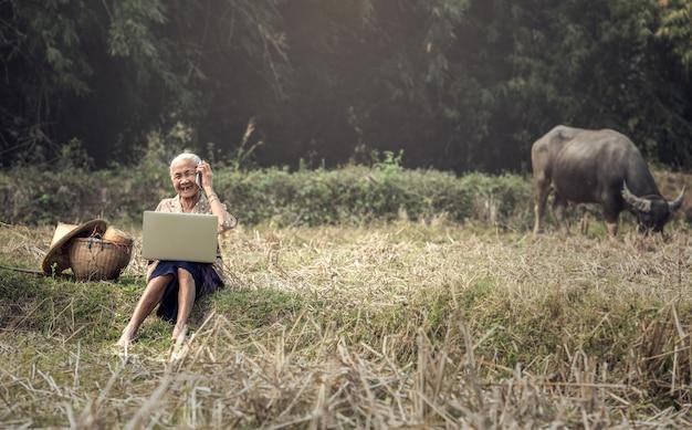 Mulher, trabalhando, ao ar livre
