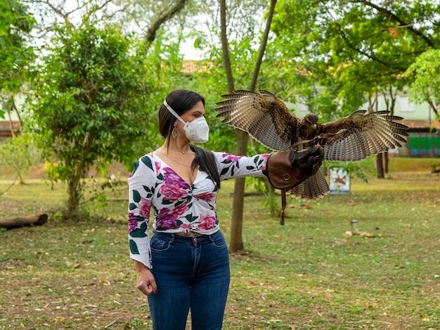 Mulher treinando falcoaria com um falcão parabuteo unicinctus