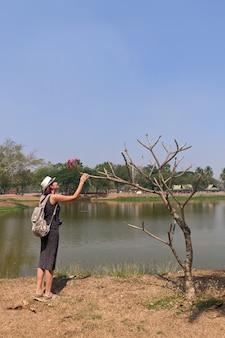 Mulher turista pegando uma flor em uma árvore seca no parque histórico de sukhothai, na tailândia