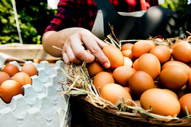 Mulher, vender, fresco, galinha, ovos, em, local, mercado fazendeiro
