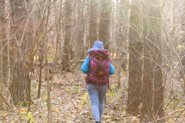 Mulher viajante caminhando na floresta, vista traseira