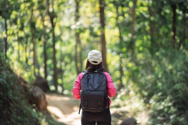 Mulher viajante caminhando na floresta