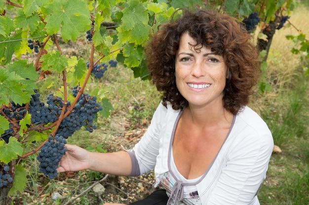 Mulher, viticultor, inspecionando a colheita de uva fresca em vinhedo.