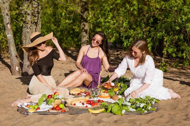 Mulheres alegres estão descansando na natureza com vinho linda mulher em óculos de sol se divertindo em picni ...