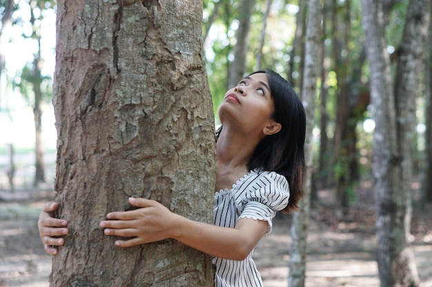 Mulheres asiáticas, abraçando árvores, conceito de amor para o mundo