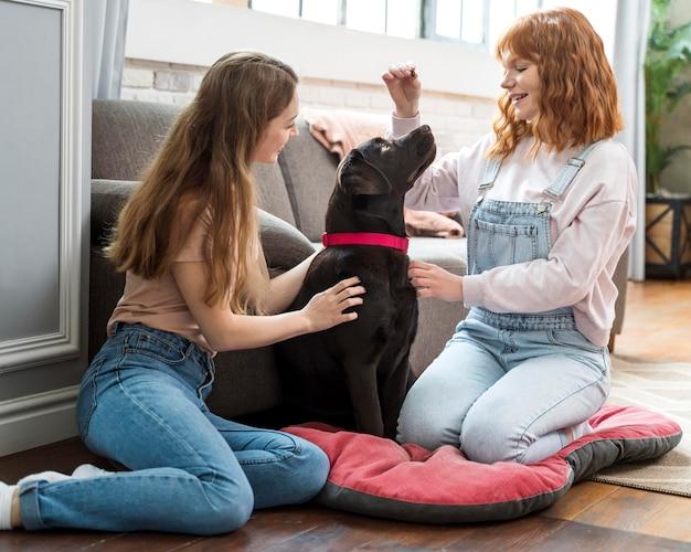 Mulheres e cachorro em plena cena na sala de estar