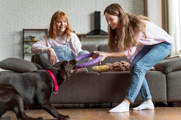 Mulheres e cachorros brincando