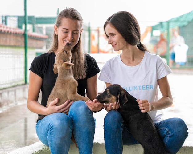 Mulheres em um abrigo brincando com cães fofos de resgate