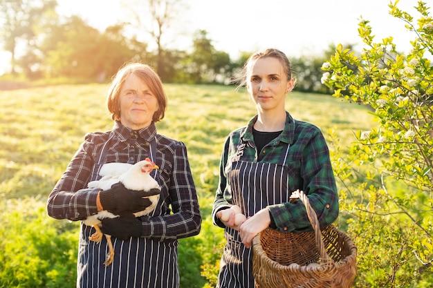 Mulheres na fazenda coletando ovos
