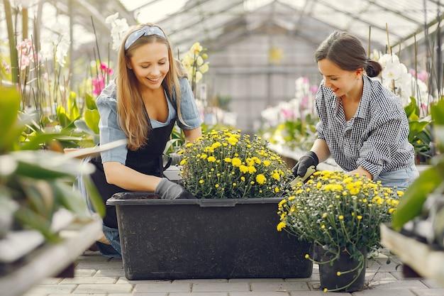 Mulheres que trabalham em uma estufa com vasos de flores