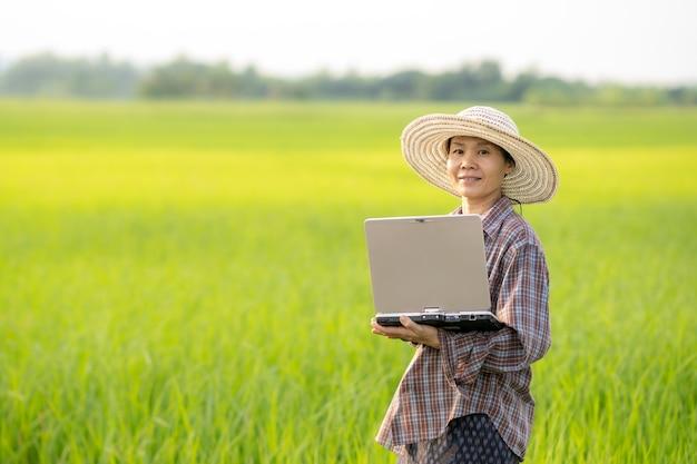 Mulheres segurando laptop e verificando o campo de arroz em uma fazenda orgânica da agricultura