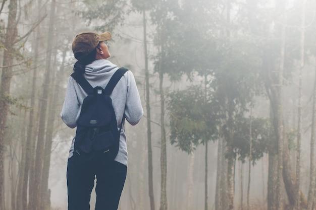 Mulheres viajante andando na estrada nos caminhos da floresta na floresta e nebuloso