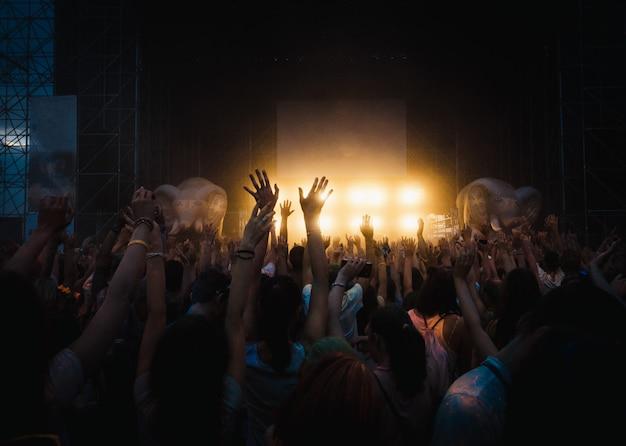 Multidão de fãs em concerto