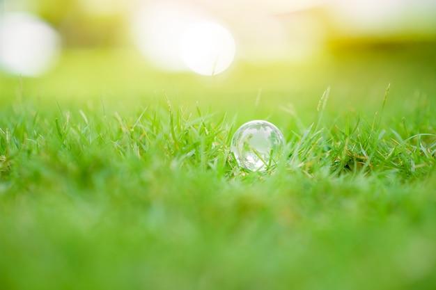 Mundo sobre fundo verde, conceito de conservação global