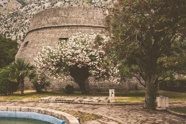 Muralha da antiga cidade montenegrina de kotor