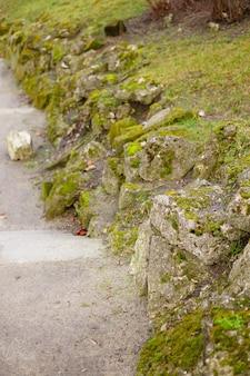 Muro de pedra de contenção baixo coberto de musgo