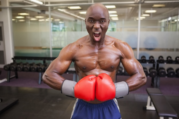 Músculo musculoso flexionando os músculos no clube de saúde