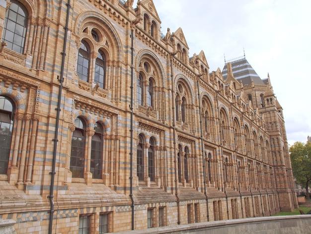 Museu de história natural, londres, reino unido