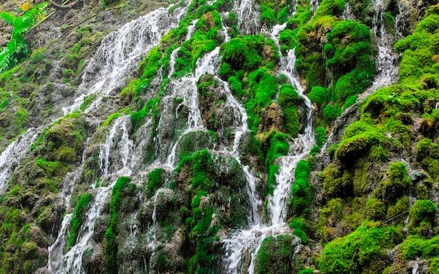 Musgo verde bonito na rocha na cachoeira