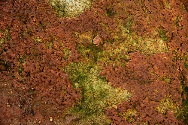 Musgo verde em textura de pedra vermelha e fundo