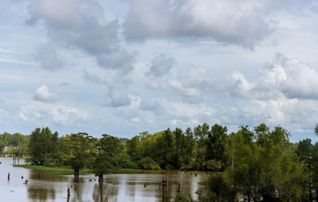 Na estação das monções, as inundações ocorrem em áreas agrícolas com árvores
