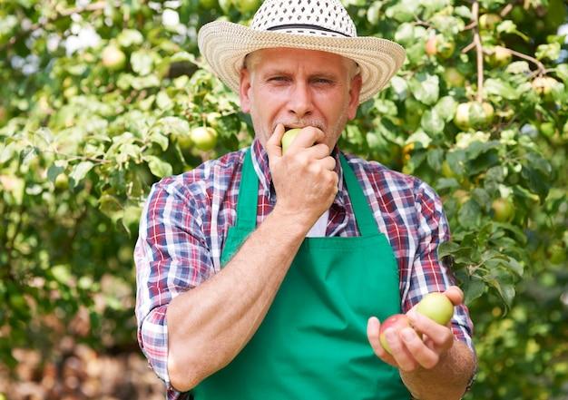 Nada tem melhor sabor do que maçã do nosso próprio jardim