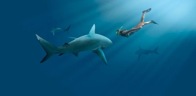 Nadador e tubarão em tiro certeiro
