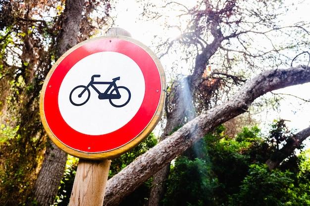 Não são permitidas bicicletas por trilhas na floresta.