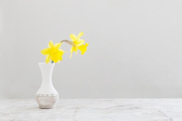 Narcisos amarelos em vaso