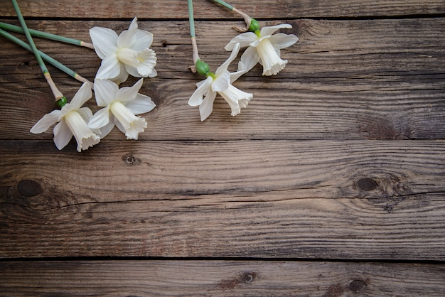 Narcisos em fundo de madeira