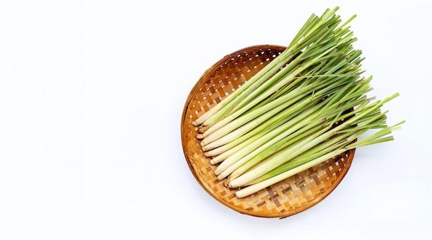 Nardo fresco na cesta trilhando de bambu de madeira no fundo branco.