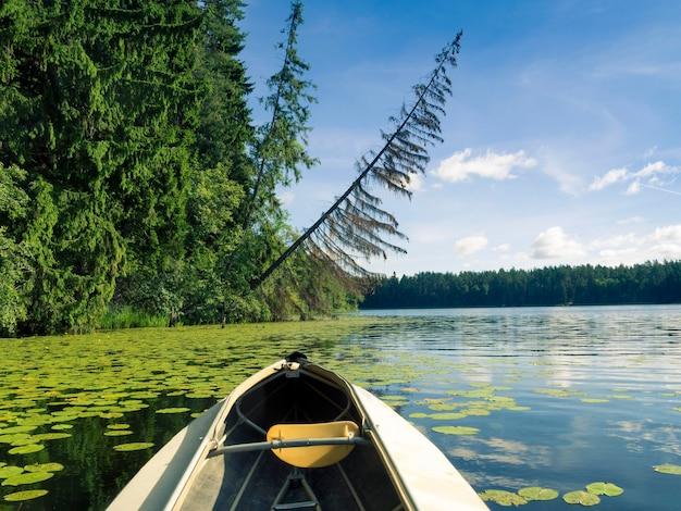 Nariz de caiaque ao ar livre no lago da floresta selvagem no verão