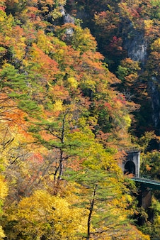Naruko gorge vale com túnel ferroviário em miyagi tohoku japão