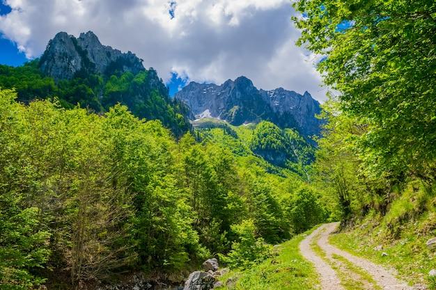 Nas montanhas existe uma estrada rochosa sinuosa.