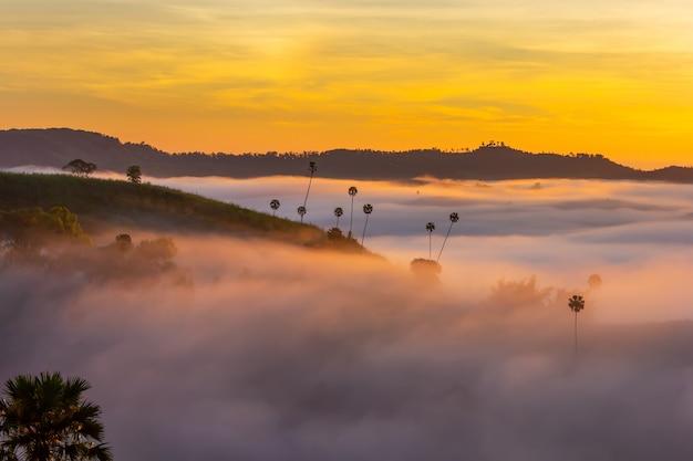 Nascer do sol bonito e a névoa em khao kho, província de phetchabun, tailândia.