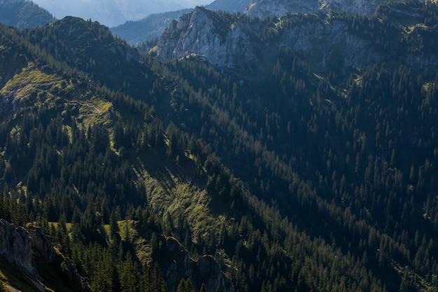 Nascer do sol de verão nas montanhas da baviera, sul da alemanha. europa