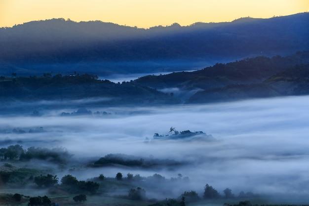Nascer do sol do lugar do curso com névoa da manhã no parque nacional de phu langka na província de phayao, tailândia