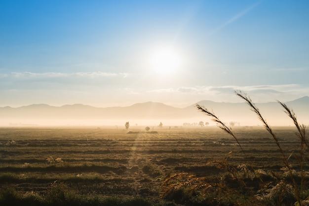 Nascer do sol na montanha de campo