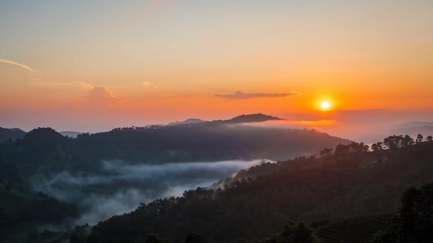 Nascer do sol na montanha em doi mae salong mae fah luang, chiang rai thailand.