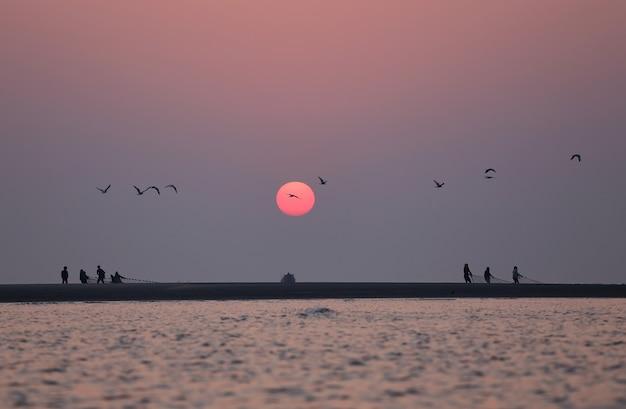 Nascer do sol na praia com pássaros voando em kuakata, bangladesh