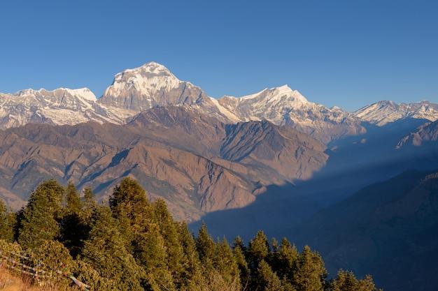 Nascer do sol nebuloso bonito nas montanhas com o ponto de vista do himalaia do fron do cume da neve, pokhara nepal