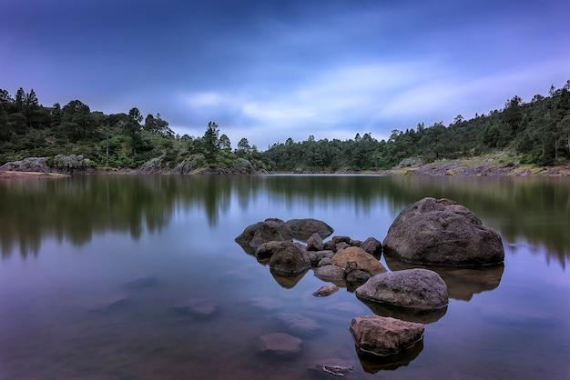 Nascer do sol no lago na floresta