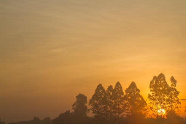 Nascer do sol pela manhã.